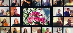 Flors de Baladre